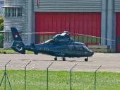 Eurocopter SA365N Dauphin 2 T-771